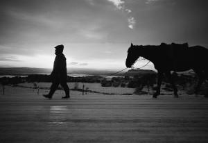 Il cavaliere della fame - foto di Salvatore Ligios